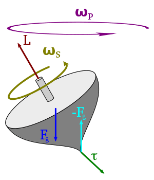 Spinning Top (diagram a)