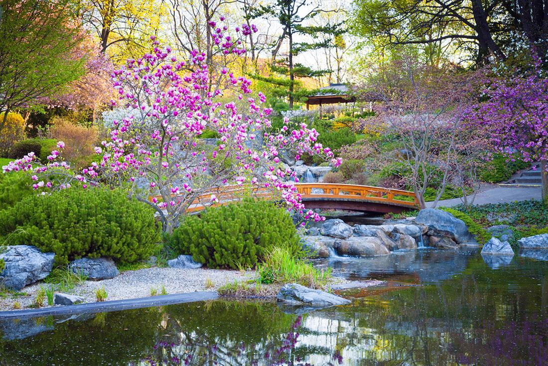 A classic Kyoto garden