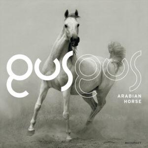 GusGus - Arabian Horse